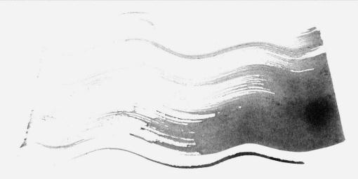 Alan single brush stroke white space negative space