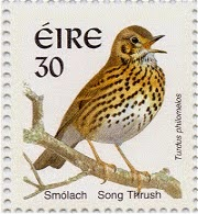 song thrush Eire postage stamp